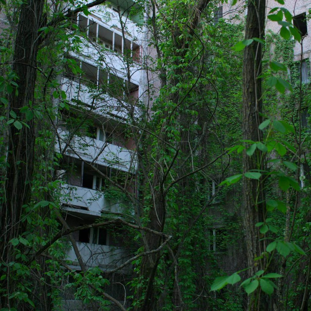 natureza crescendo sobre prédios da cidade fantasma de Chernobyl.